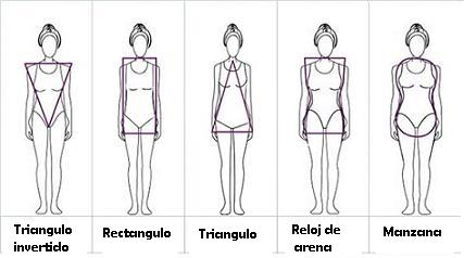 Copia de tipos de cuerpo